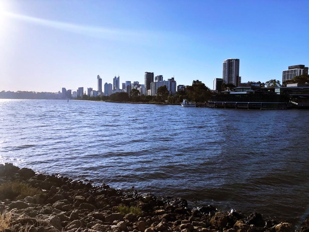 rzeka łabędzia w Perth