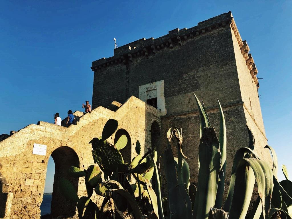 wieża we Włoszech porośnięta kaktusami